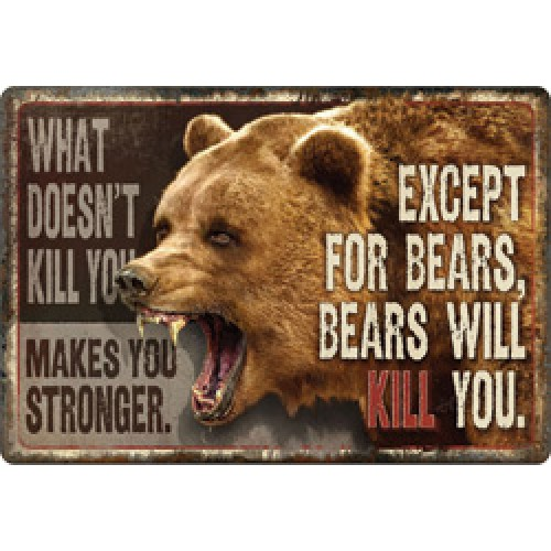Metal Sign- What Doesn't Kill You....