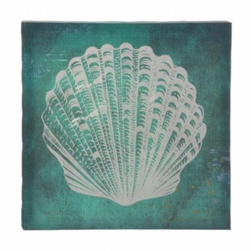 White Seashell Canvas Wall Art