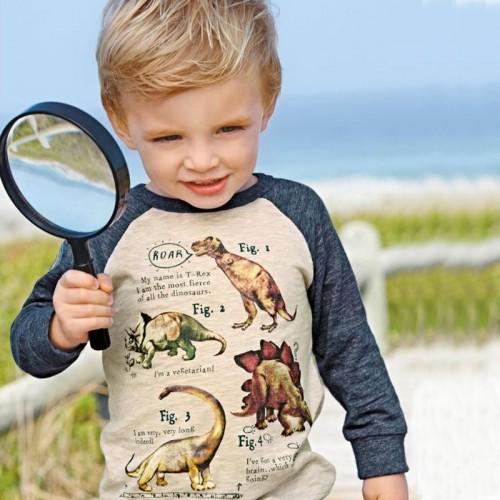 2-7 years Boys T-shirt Kids Long Sleeve 100% Cotton cute dinosaur shirts