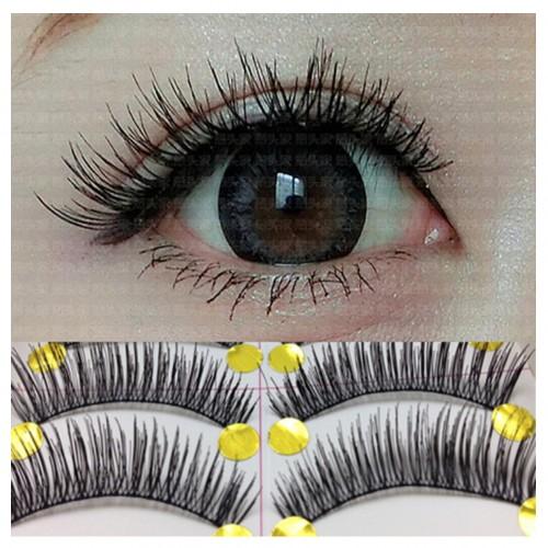 10 Pairs/1 Set Makeup Beauty Natural False