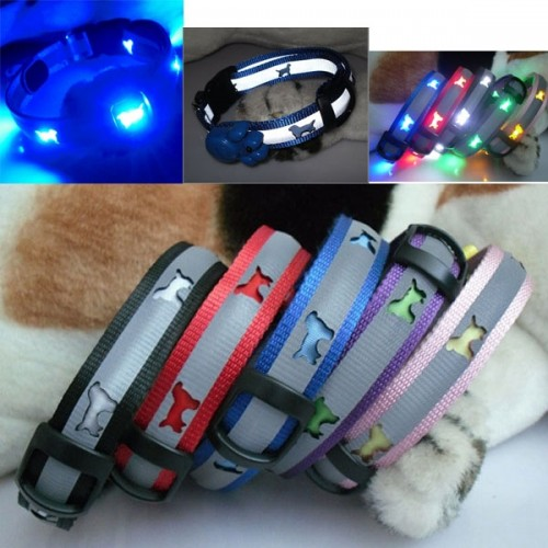 LED Pet Dog Collar Nylon Blue w/ Laser Dog Pattern
